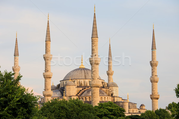 Sultan Ahmet Mosque in Istanbul Stock photo © rognar