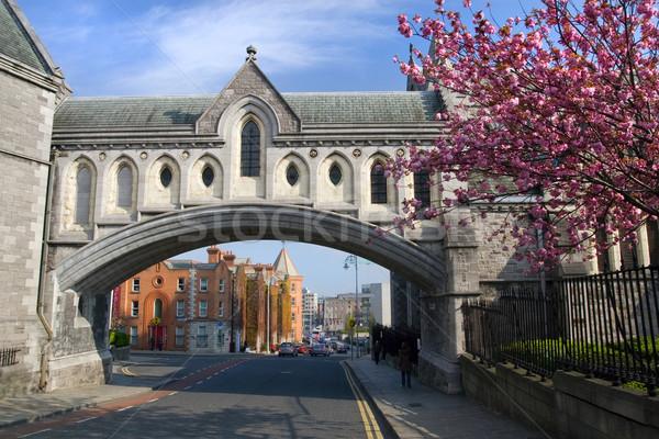 Dublin stadsgezicht christ kerk kathedraal eerste Stockfoto © rognar
