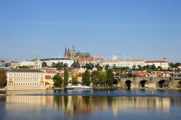 Prague Castle in Late Afternoon Stock photo © rognar