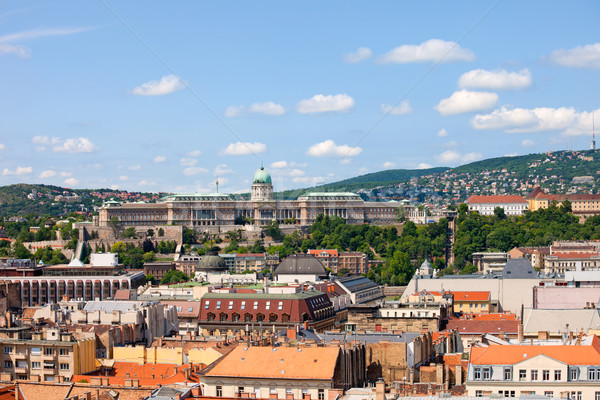 Budapest Cityscape and Buda Castle Stock photo © rognar