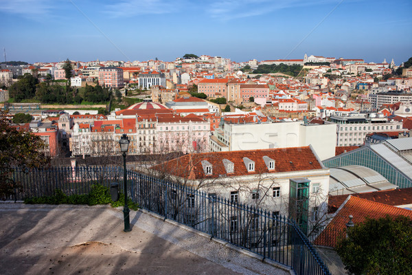 City of Lisbon from Above in Portugal Stock photo © rognar