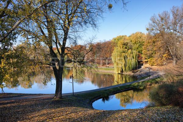 Park Warschau rustig landschap najaar stad Stockfoto © rognar