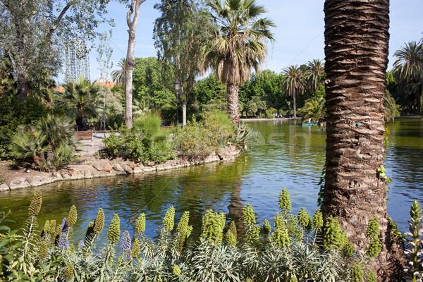 Park Barcelona víz fa város természet Stock fotó © rognar