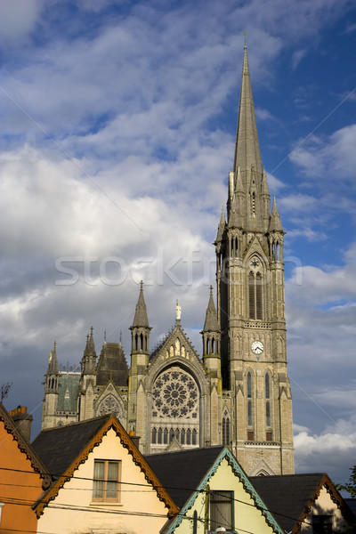 St. Colman Cathedral in Cobh Stock photo © rognar