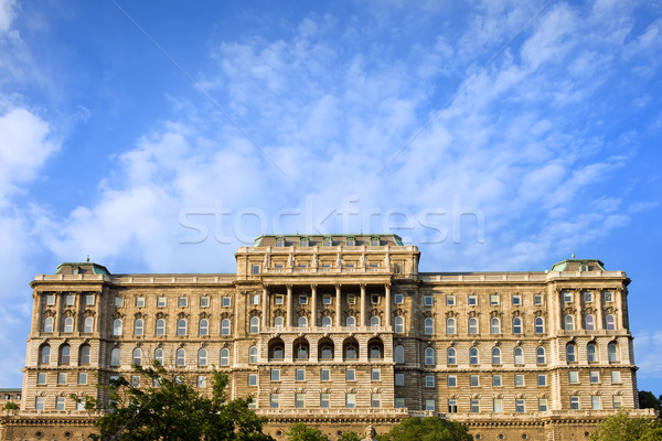 Buda Castle Baroque Facade Stock photo © rognar