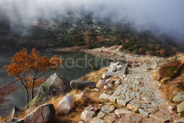 Szlak mały staw góry górskich Polska Zdjęcia stock © rognar