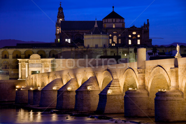 Roman Bridge and Mezquita in Cordoba at Dawn Stock photo © rognar