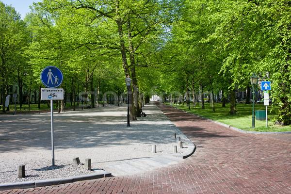 Lange Voorhout in Den Haag Stock photo © rognar