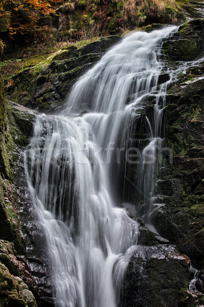 Waterval Polen park bergen natuur berg Stockfoto © rognar