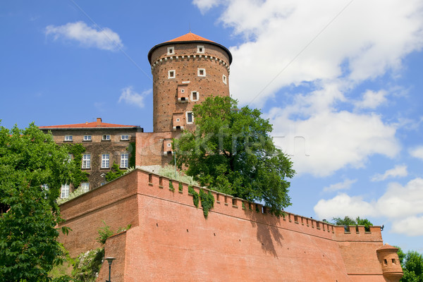 Wawel Medieval Castle Fortification Stock photo © rognar