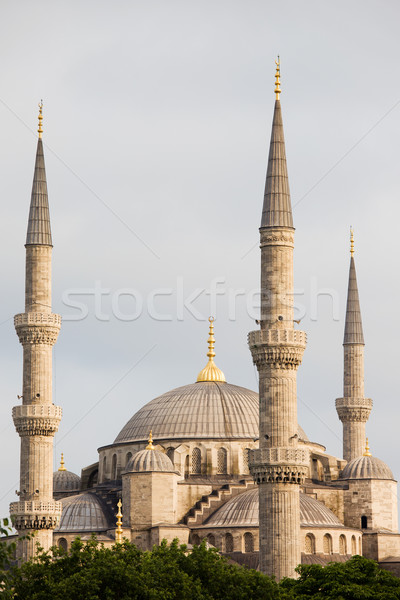Blue Mosque Stock photo © rognar