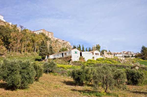 City of Ronda and Andalusia Countryside Stock photo © rognar