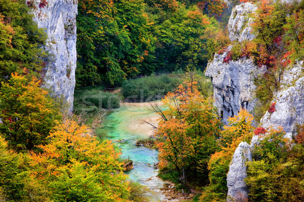 Sonbahar dağ orman manzara dağlar kaya Stok fotoğraf © rognar