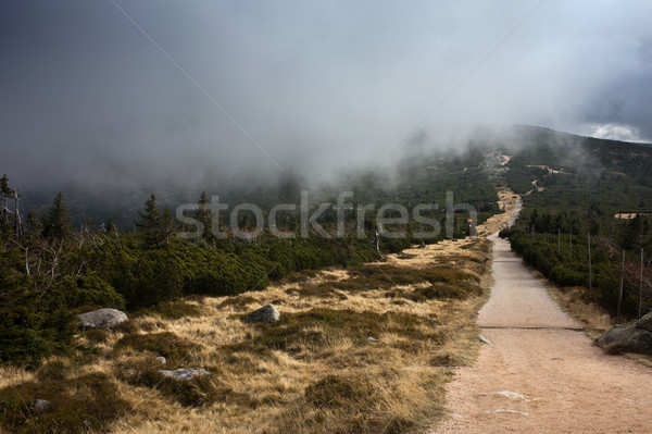Mountain Summit With Low Hanging Clouds Stock photo © rognar