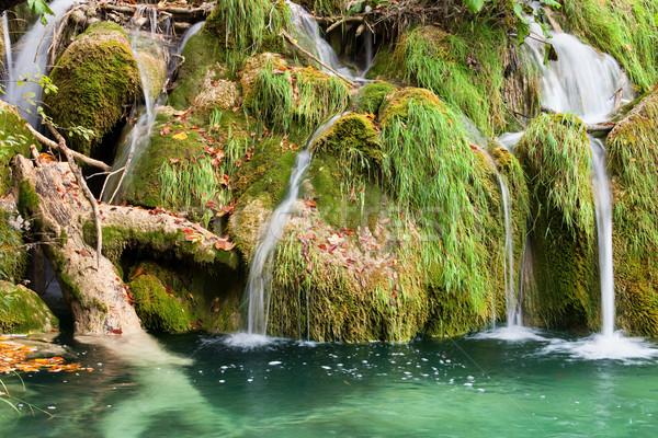 水 カスケード 美しい 絵のように美しい 草で覆われた ストックフォト © rognar