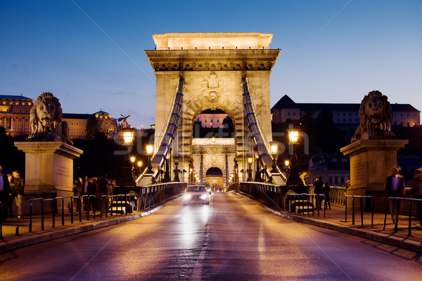 Chain Bridge in Budapest at Night Stock photo © rognar