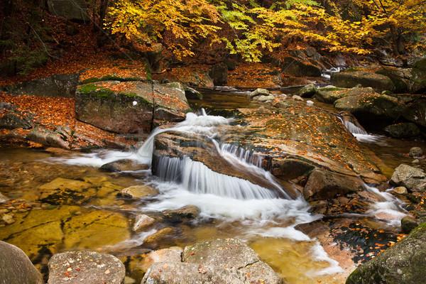 Vízesés ősz díszlet folyam kicsi gyönyörű Stock fotó © rognar