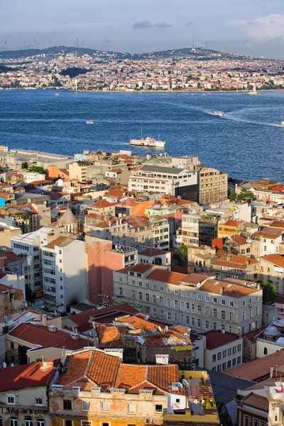 City of Istanbul from Above Stock photo © rognar
