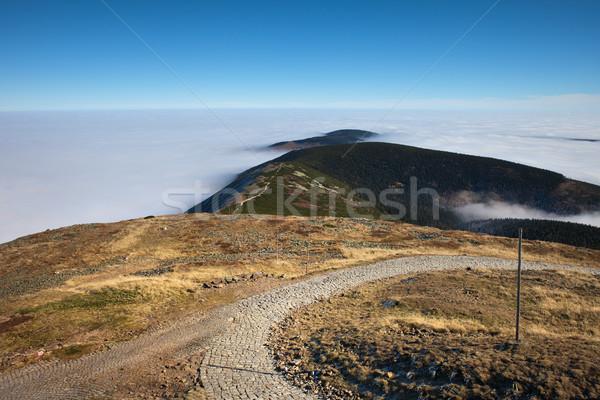 Montagna panorama percorso erba strada natura Foto d'archivio © rognar