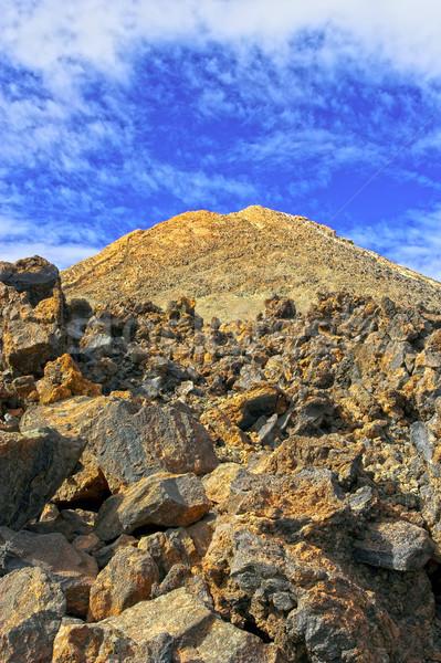 Vulkanisch tenerife Spanje toeristische Stockfoto © rognar