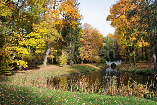 Royal parc Varsovie automne ville Pologne Photo stock © rognar