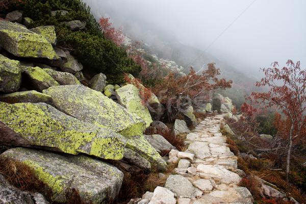 туман горные пути осень декораций гор Сток-фото © rognar