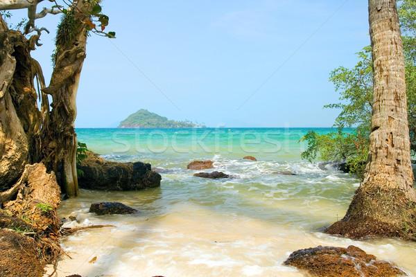 Tropical Island Landscape Stock photo © rognar