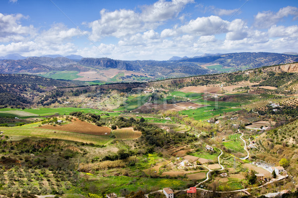 Tájkép Spanyolország Andalúzia déli fák mező Stock fotó © rognar