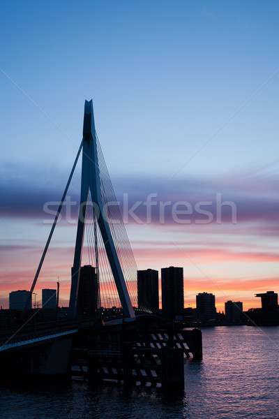 Stock photo: City of Rotterdam Skyline Silhouette