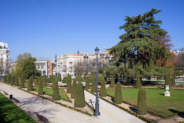 Buen Retiro Park in Madrid Stock photo © rognar