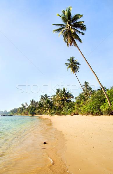 Тропический остров пейзаж пляж Таиланд воды морем Сток-фото © rognar