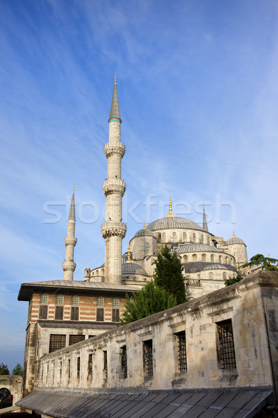 Old City of Istanbul Stock photo © rognar