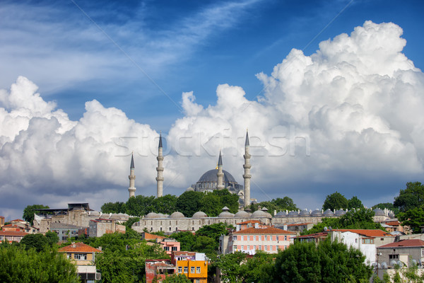 Isztambul városkép mecset domb Törökország épület Stock fotó © rognar