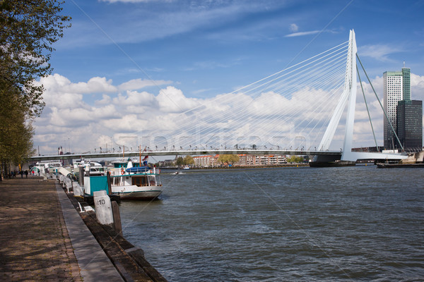 Erasmusbrug in Rotterdam Stock photo © rognar
