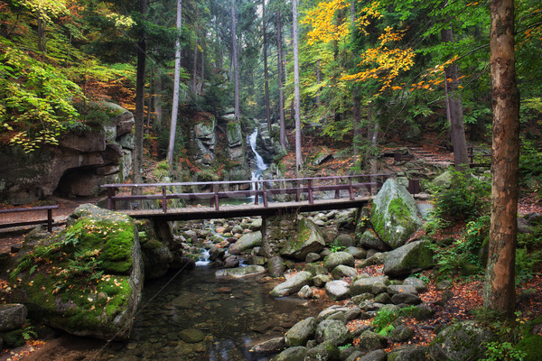 橋 ストリーム 秋 山 森林 滝 ストックフォト © rognar