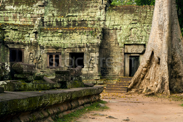 Foto d'archivio: Tempio · Cambogia · scenico · rovine · noto · albero