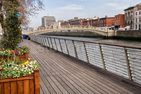 川 ダブリン 橋 市 アイルランド 花 ストックフォト © rognar