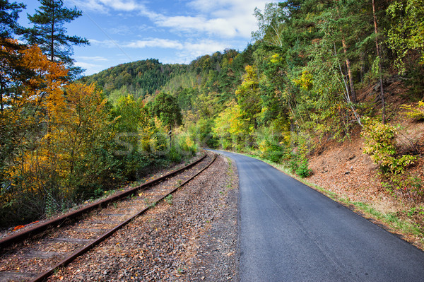 Rural Road and Railway Track Along Autumn Forest Stock photo © rognar