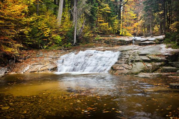 Wody kaskada strumienia jesienią lasu gigant Zdjęcia stock © rognar