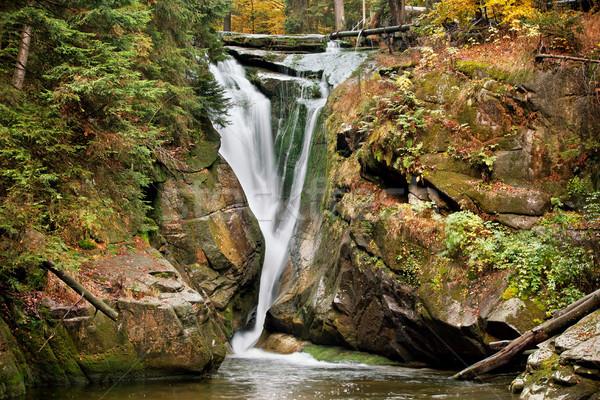 Cascata autunno parco foresta montagna caduta Foto d'archivio © rognar