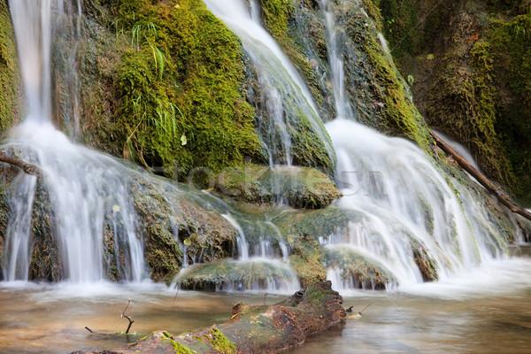 Wody kaskada mały lasu strumienia wodospad Zdjęcia stock © rognar