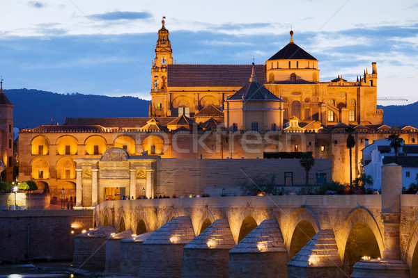Cathedral Mosque of Cordoba Stock photo © rognar