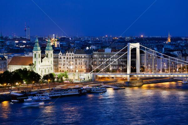 City of Budapest at Night Stock photo © rognar