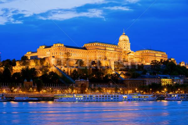 Castello Budapest danubio fiume Foto d'archivio © rognar