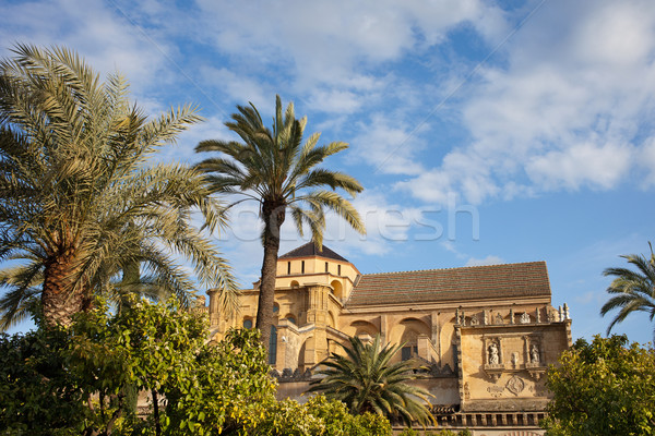 Courtyard Garden and Mezquita Cathedral of Cordoba Stock photo © rognar