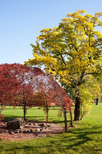 Varsavia Università biblioteca giardino autunno scenario Foto d'archivio © rognar