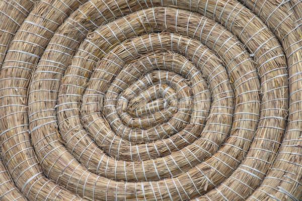Okçuluk saman hedef geleneksel eğlence Stok fotoğraf © rognar