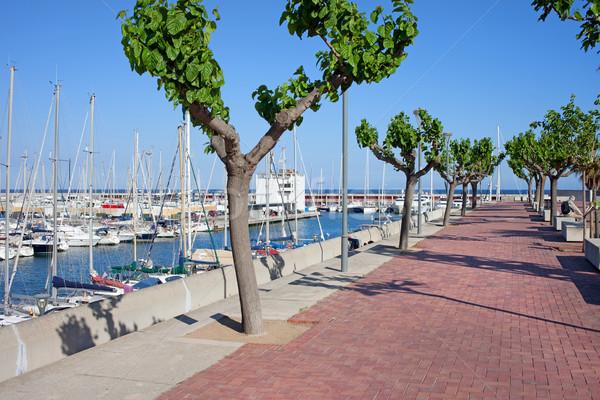 Kikötő promenád Barcelona marina fa város Stock fotó © rognar