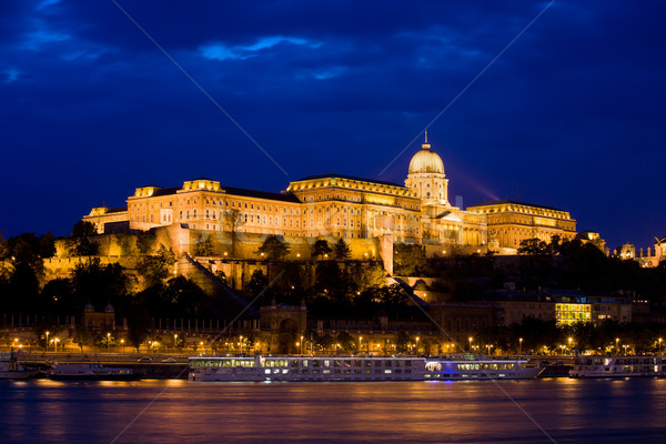 Buda Castle at Night in Budapest Stock photo © rognar
