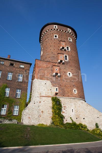 Torony kastély Krakkó királyi Lengyelország körül Stock fotó © rognar